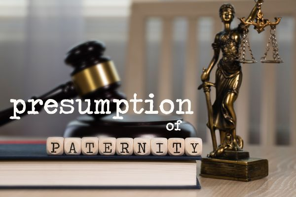The Basics of Paternity Law in Wisconsin